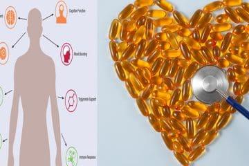 Омега-3 жирні кислоти отримують із двох дієтичних джерел: морепродуктів та деяких горіхових та рослинних олій.